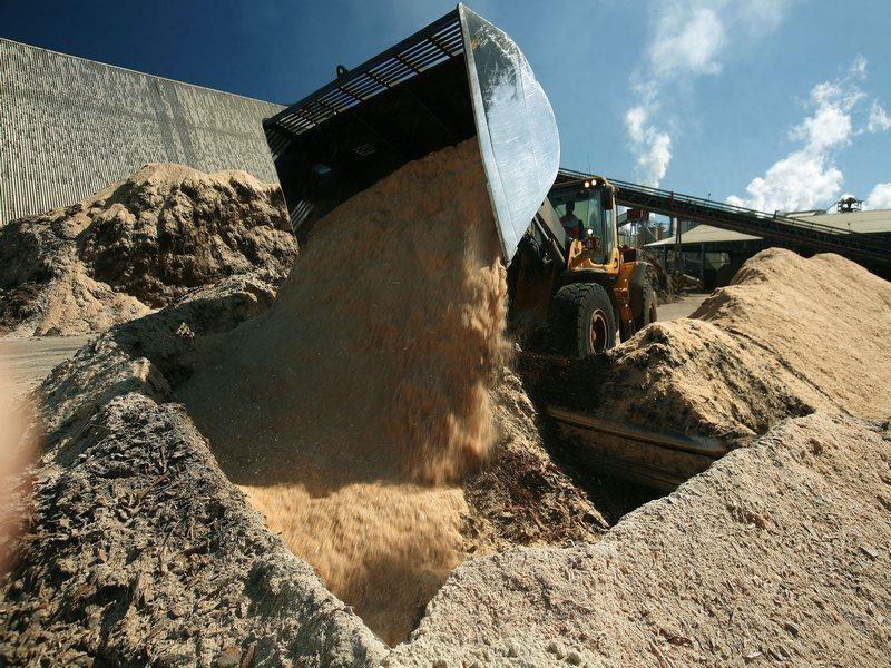 Imagen de Horcones biomass power plant expansion project